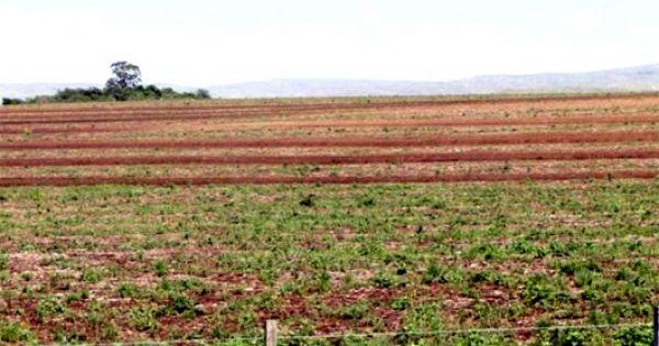 Terrazas Para Controlar Agritotal