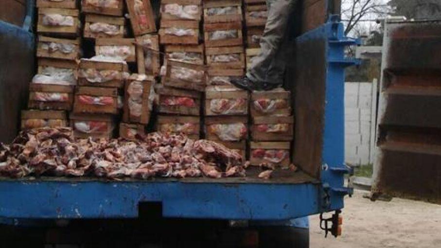 Decomisan en Marcos Paz 17.000 kilos de pollo fresco - Agritotal