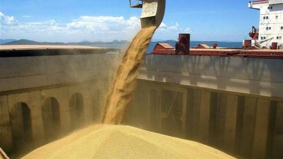 Liquidación de divisas del agro acumula caída interanual del 11,2%