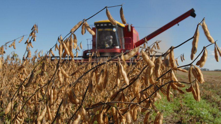 Arranca otra baja de las retenciones a la soja: el costo sería de $ 20 mil millones