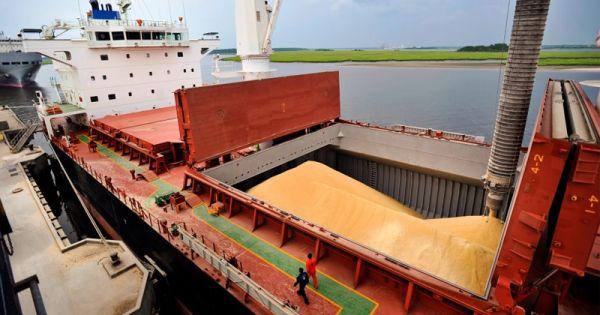 Siguen creciendo las exportaciones agroindustriales argentinas - Agritotal