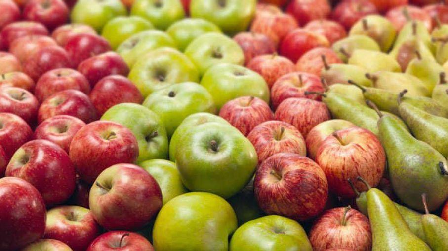 fortalecerán controles sanitarios en frutas con destino a brasil