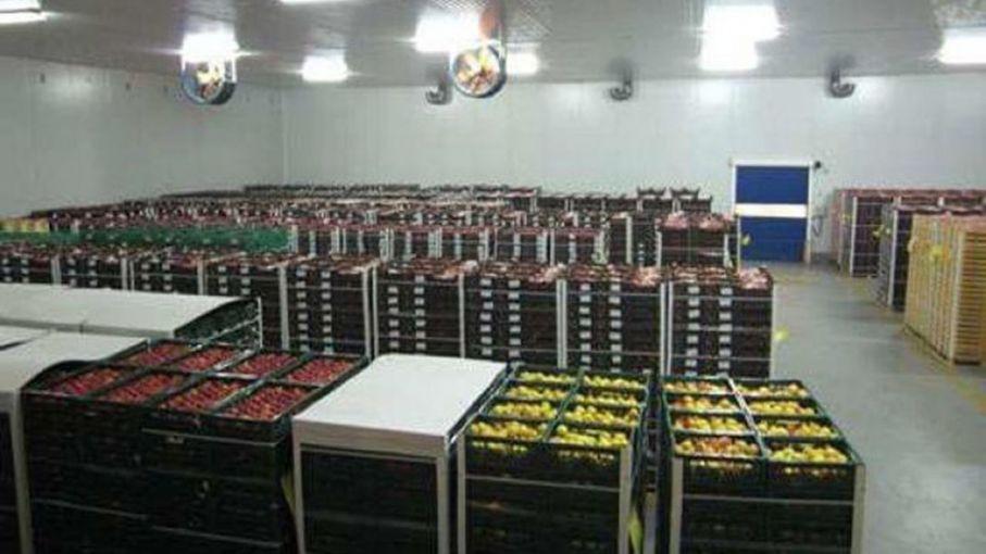 Fruta: Llegaron las facturas de energía con subas promedio del 70%