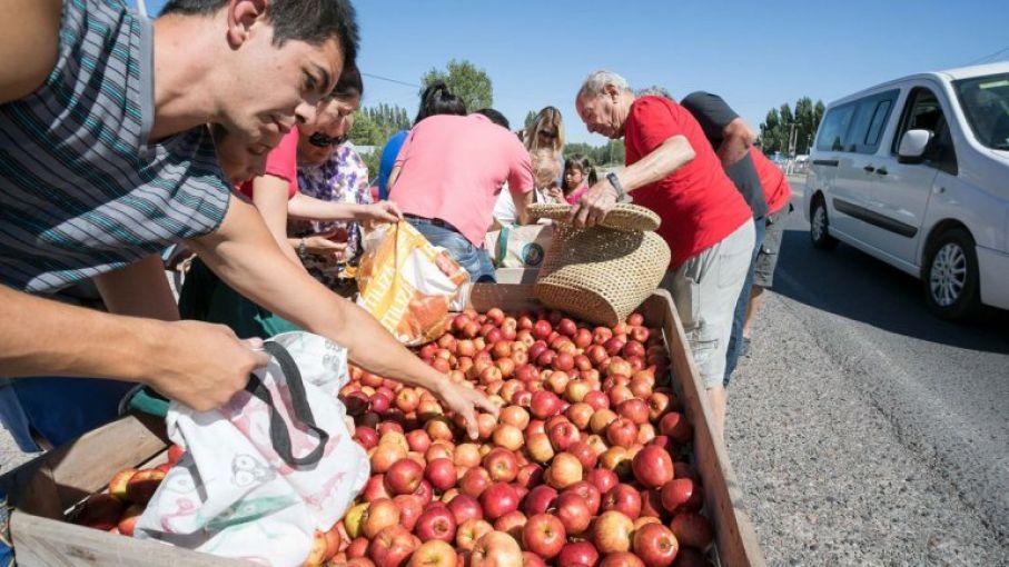 Por la crisis, regalaron más de 30.000 kilos de manzanas