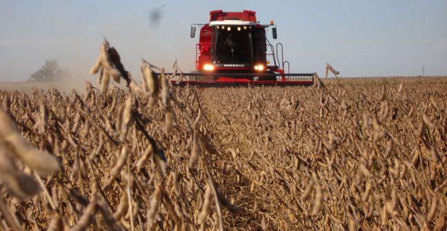 Resultado de imagen para soja cosecha